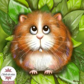 Coupon Ninijoli - Hamster