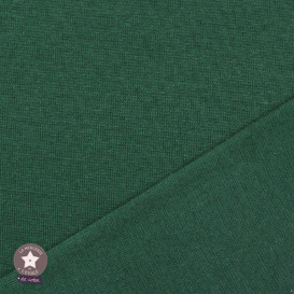 Bord-côte BIO - vert cyprès - Oeko-Tex